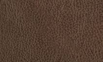 //images.dfs.co.uk/i/dfs/brazilwithleatherlookfabric_cocoa_leather
