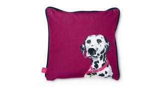 Joules Scatters Daisy-Dalmation Small Scatter Cushion