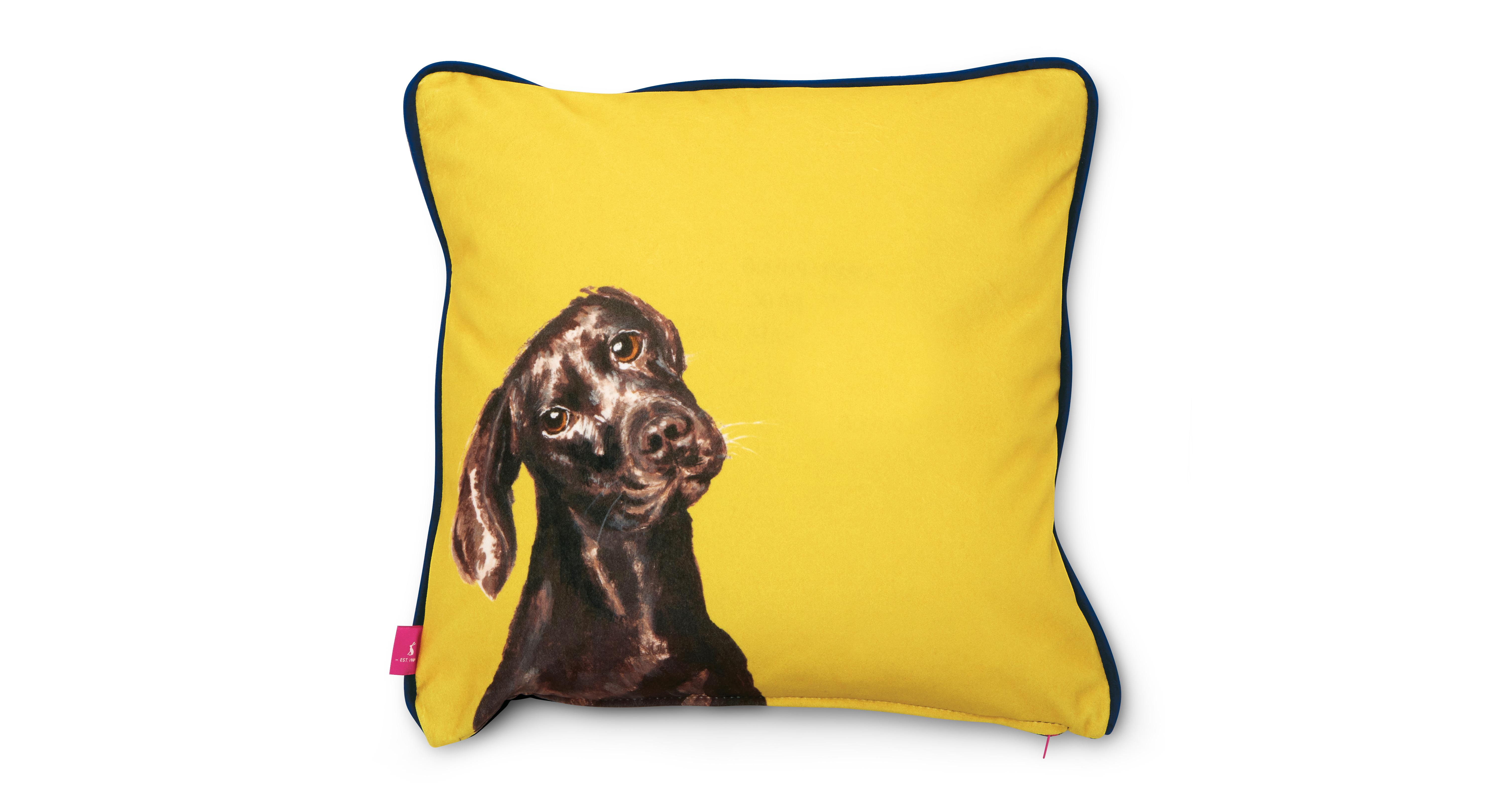 Joules Scatters Laura Labrador Small Scatter Cushion Laura Labrador Dfs