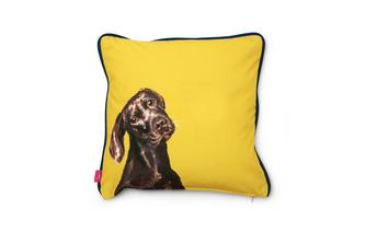 Laura-Labrador Small Scatter Cushion