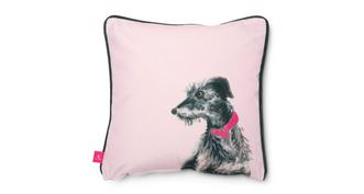 Joules Scatters Lilian-Lurcher Small Scatter Cushion