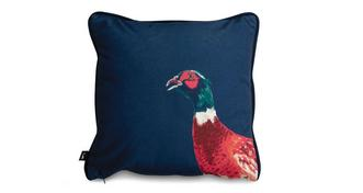 Joules Scatters Fiona-Pheasant Small Scatter Cushion