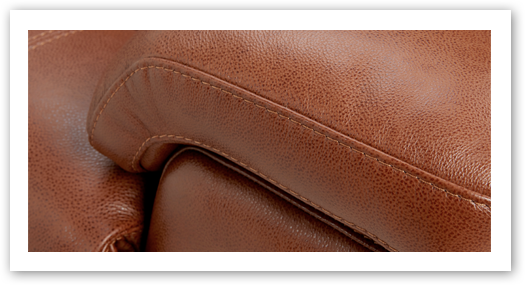 5 Year Leather Protection Plan