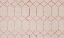//images.dfs.co.uk/i/dfs/mulan_coral_pattern