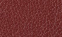 //images.dfs.co.uk/i/dfs/newclub_red_leather