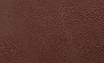 //images.dfs.co.uk/i/dfs/premium_chestnut_leather