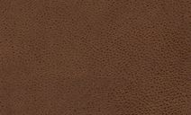 //images.dfs.co.uk/i/dfs/zincleather_tan_leather